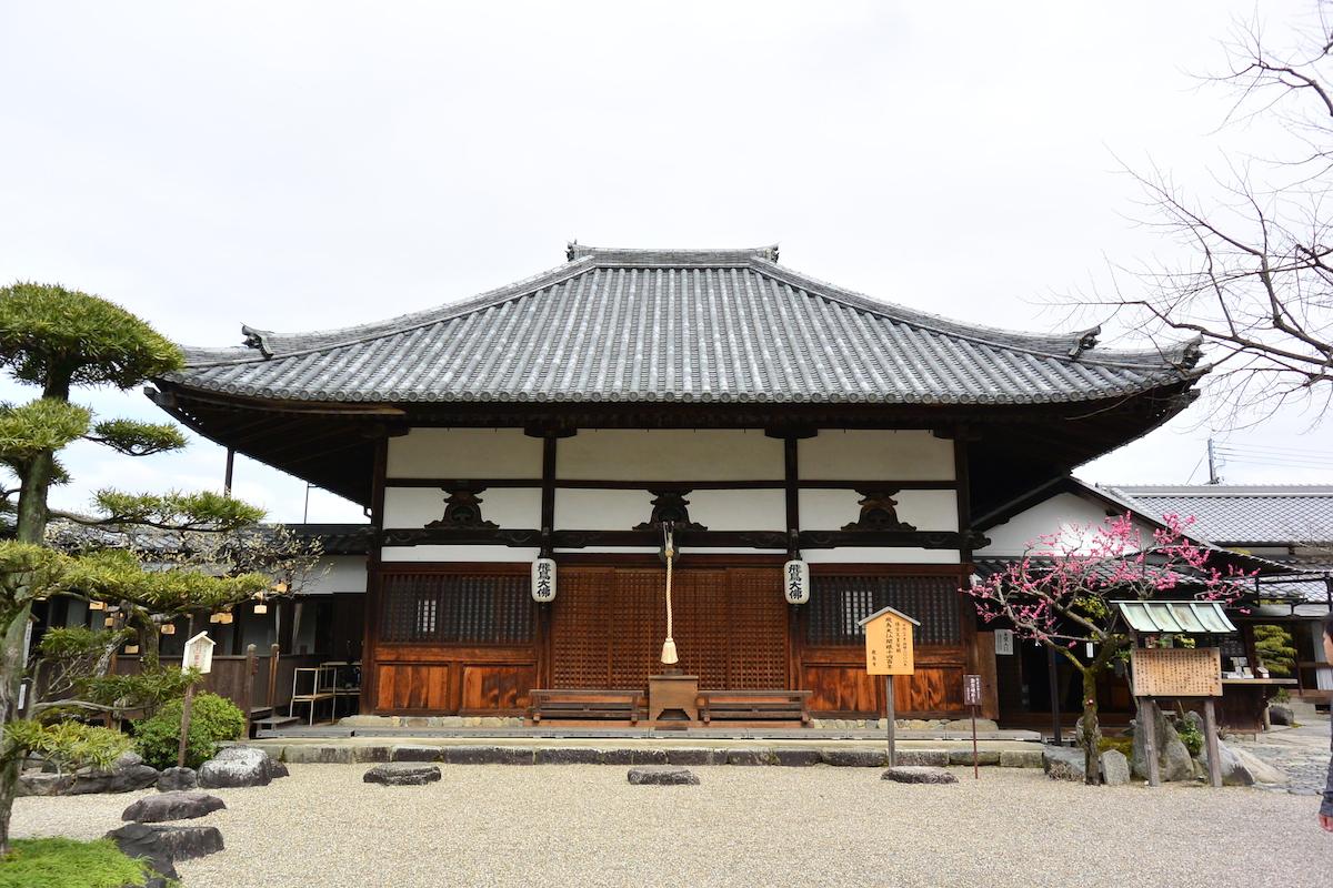 飛鳥寺で日本最古の大仏様とご対面。